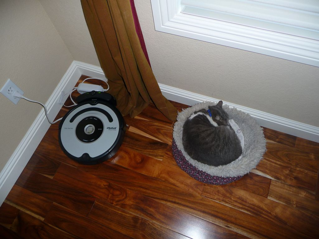 both roombas are charging