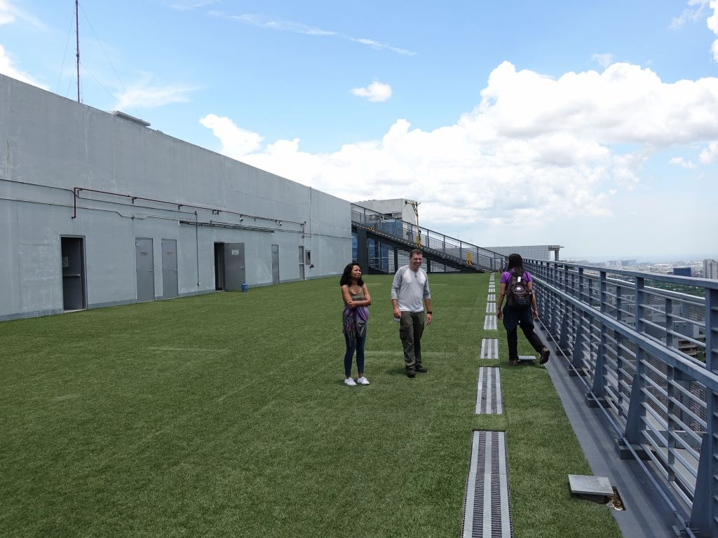 NETP has a great roof terrace with views