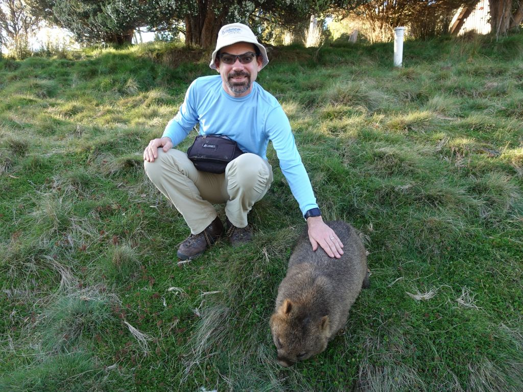 it didn't even mind being pet, which is unusual as adult wombats are usually not friendly