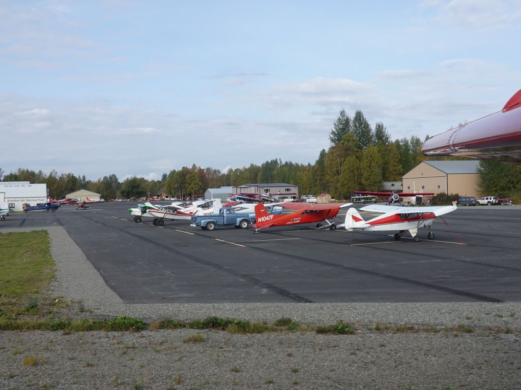 lots of taildraggers