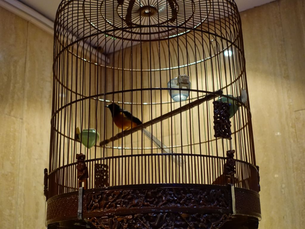 they had nice singing birds you could hear in the entire hotel