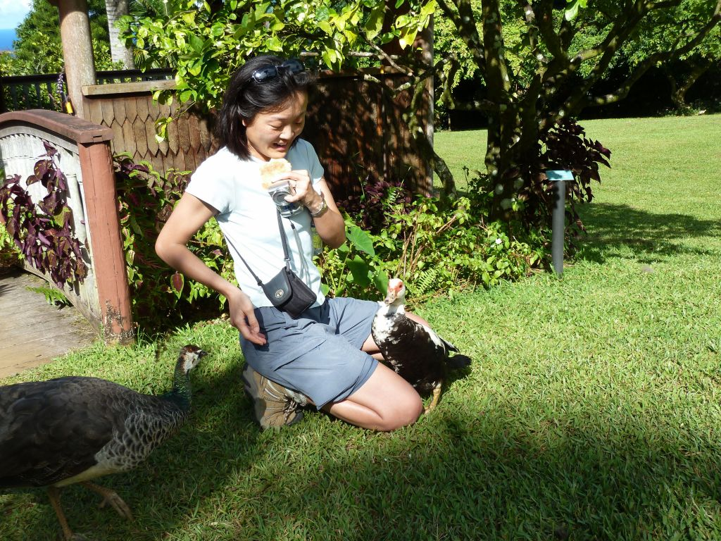 that duck almost climbed on her lap to get food ;)