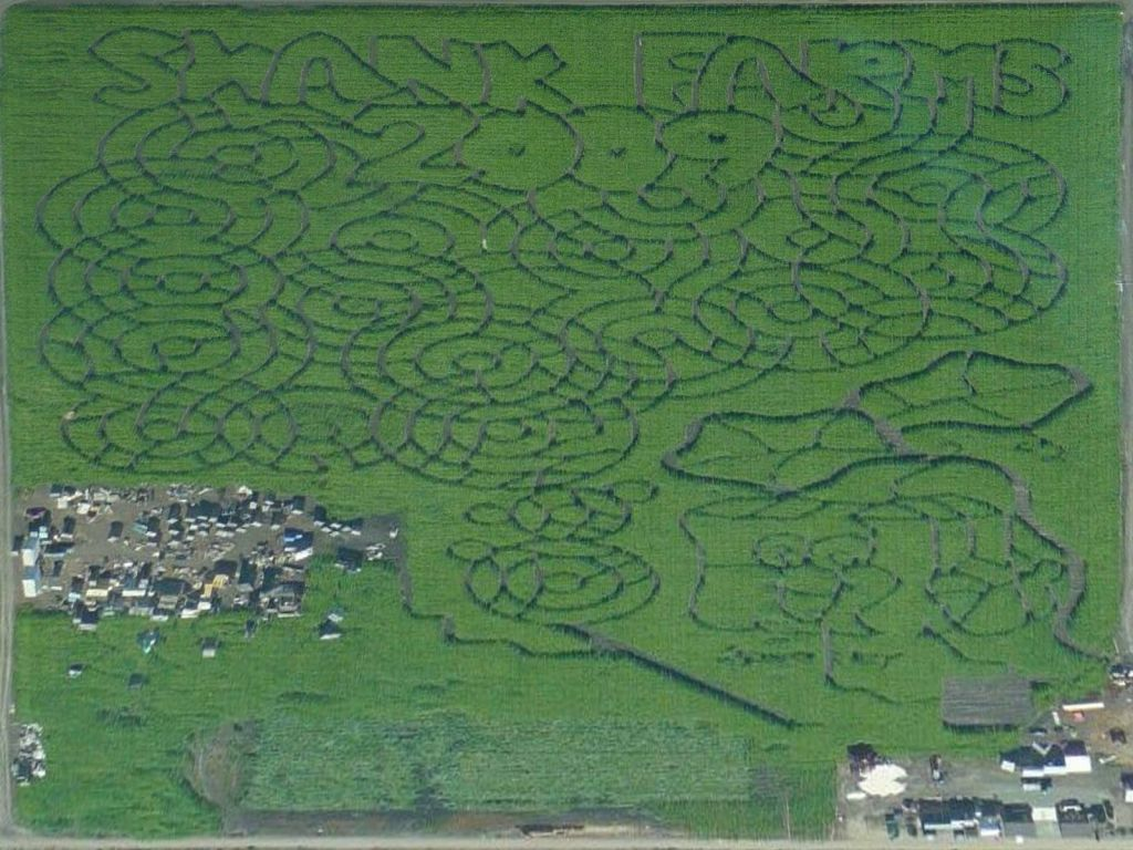 nice garden maze by the runway