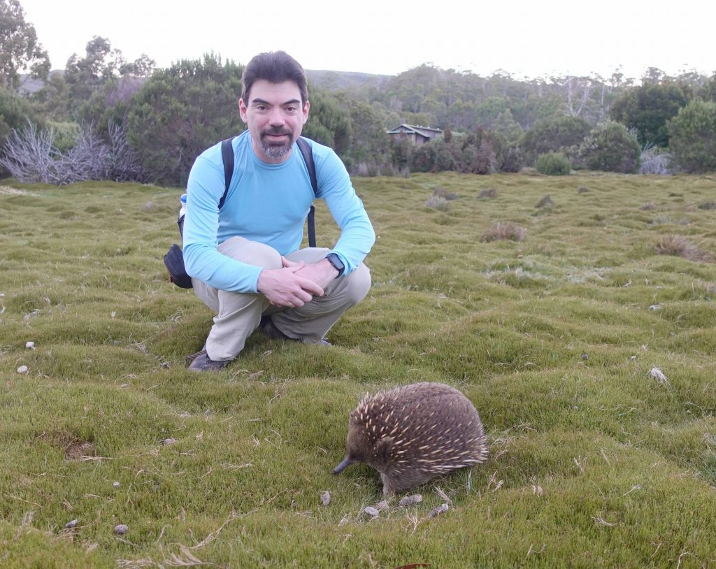 then I got super lucky and spotted this echidna