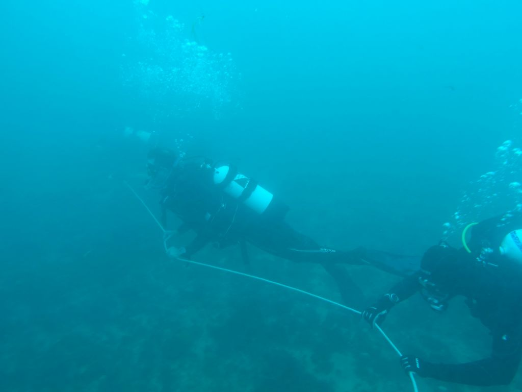 5kt of current, my first drift dive with a rope