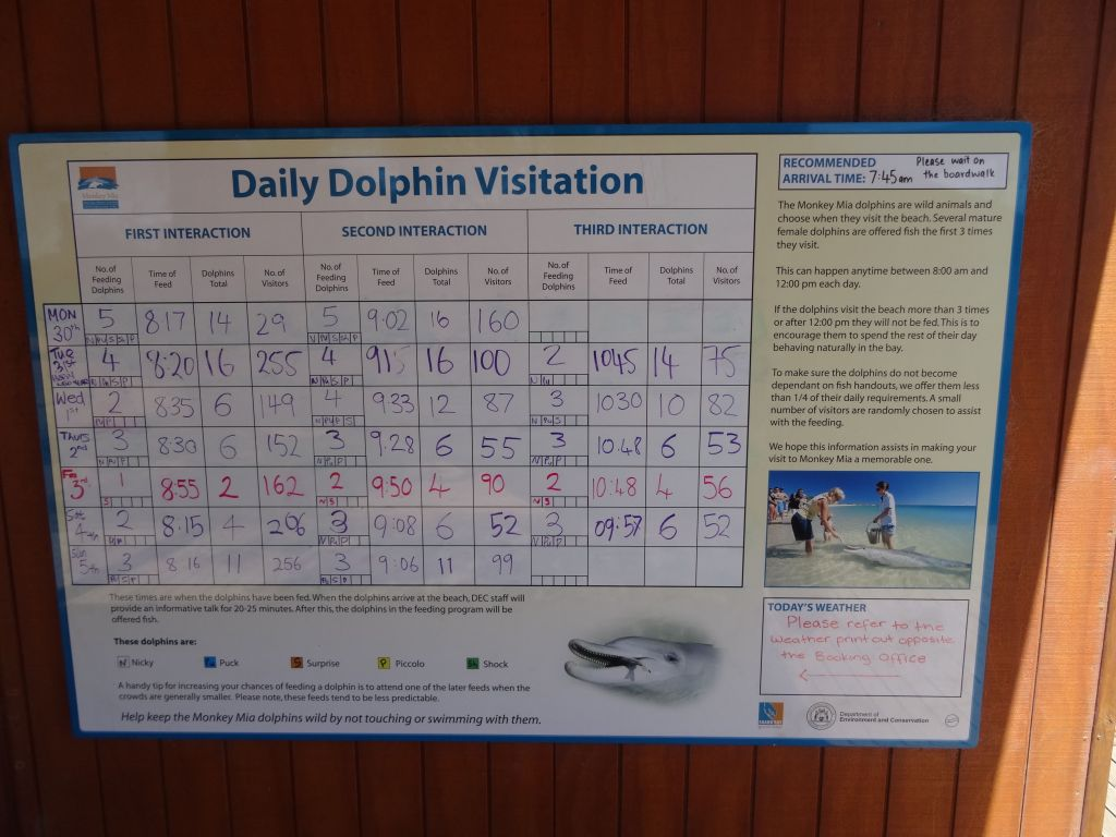 this board told us that we'd likely be out of luck for seeing dolphins that day