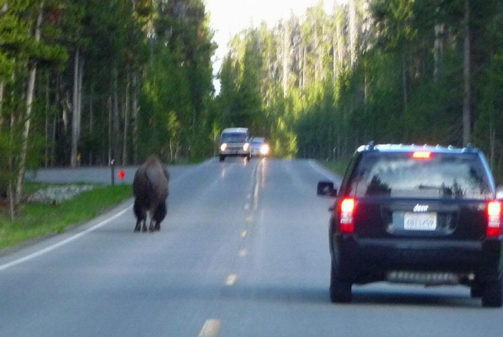 but they sometimes drive on the wrong side of the road :)