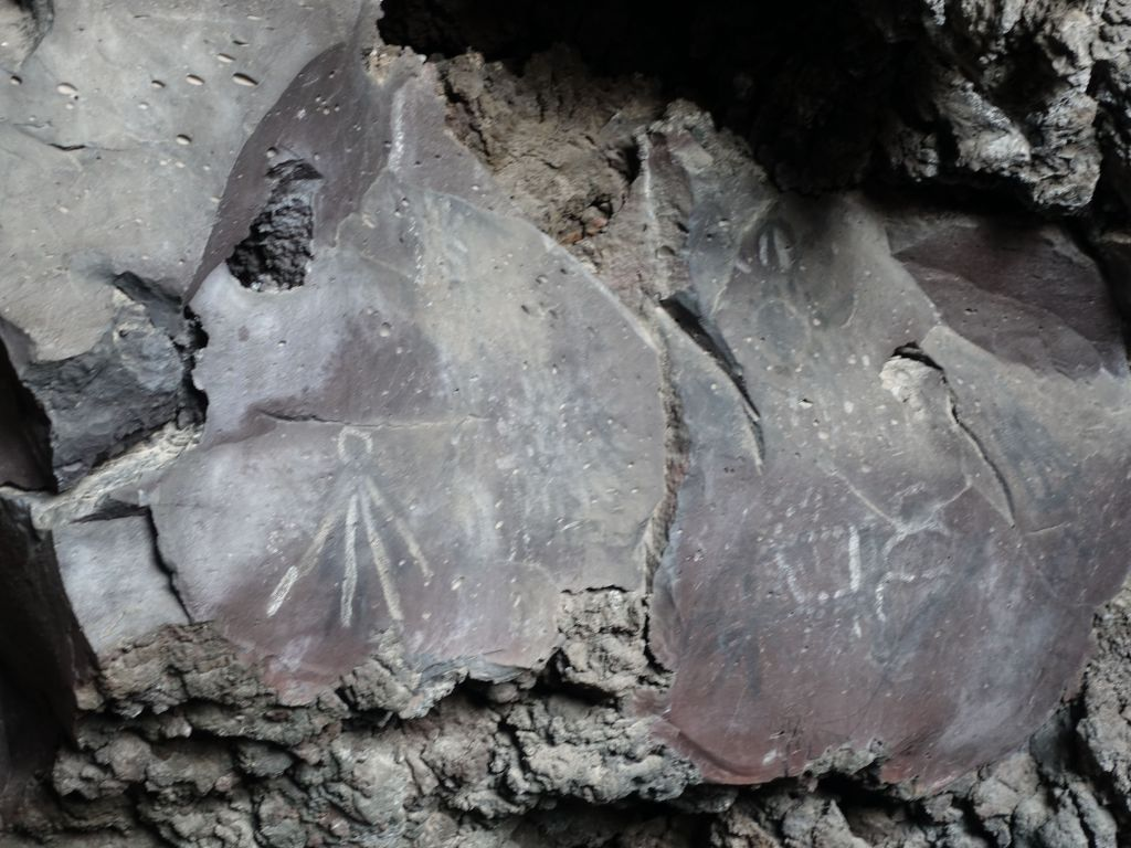 the pictographs by the entrance were hard to find, but Jennifer found them