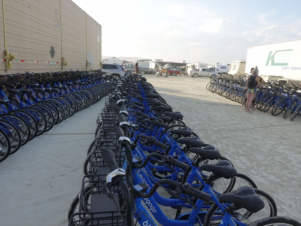 many bikes for rent