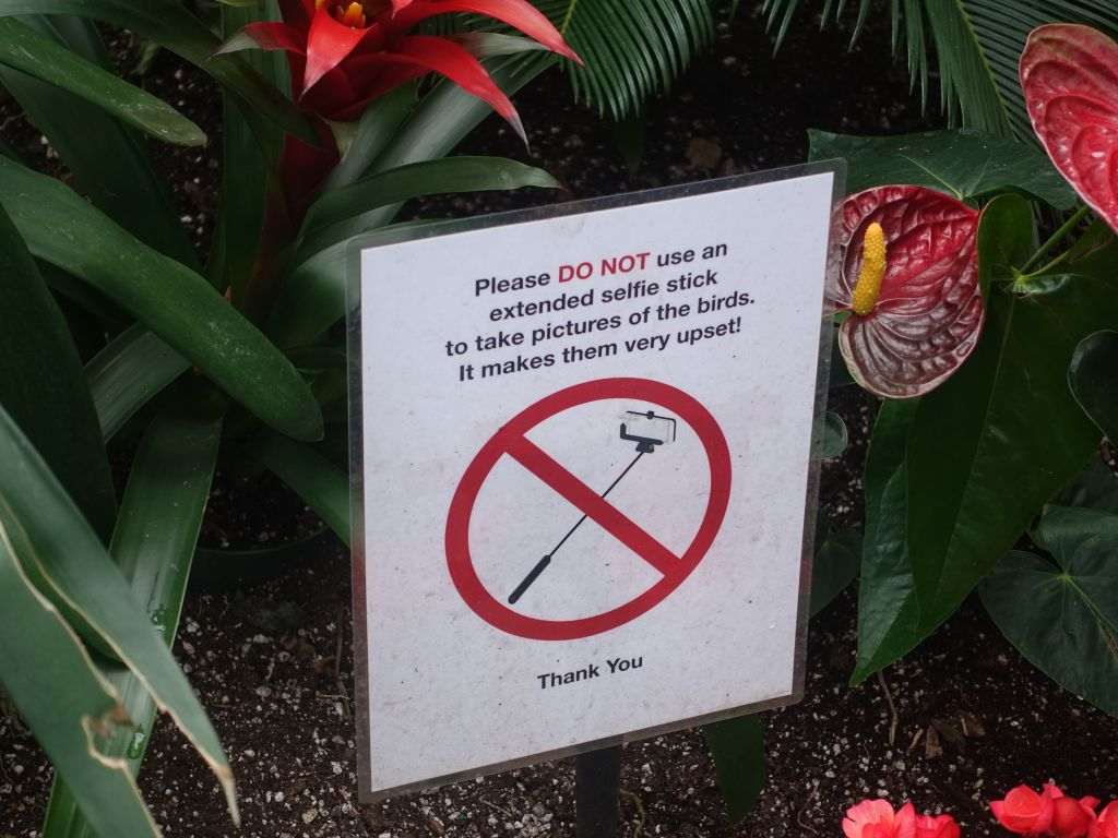 haha, death to you selfie stick users!