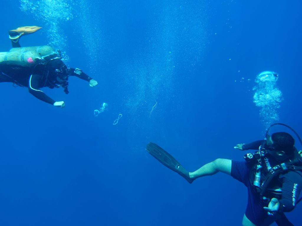 our dive guides spent deco time doing bubble ring wars, this one could make them with his fin, awesome!