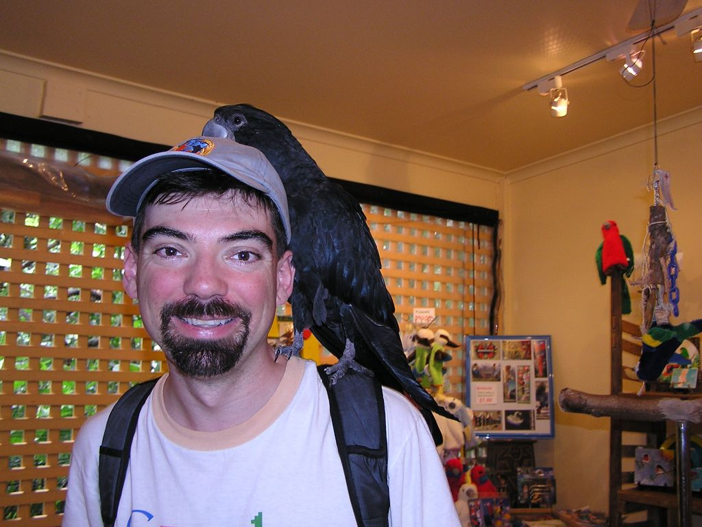 the gift shop had another big parrot that liked my hat :)