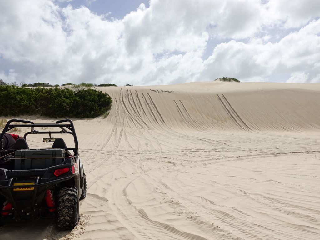 I made it up the sand dune the first time (where others bailed and rolled back)