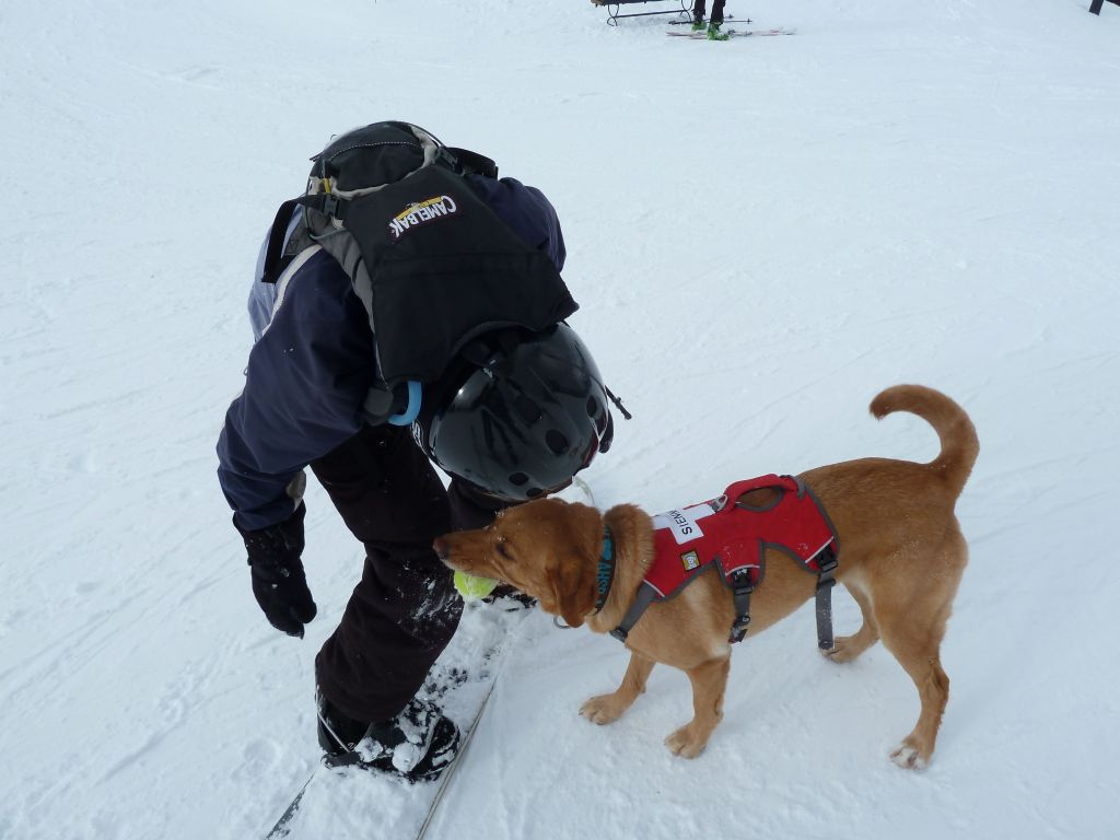 the ski patrol dog had its tennis ball to play with us